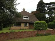 2 bed Detached Bungalow to rent in Huntingdon Road...