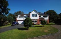 Detached house in Kirland Bower, Bodmin