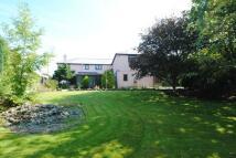 Trecrogo Detached house for sale
