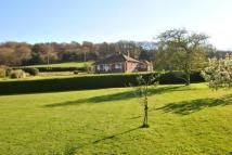Kilve Equestrian Facility property for sale
