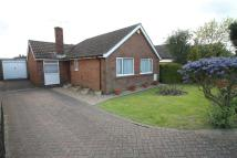 Detached Bungalow for sale in Pax Hill, Bedford, MK41