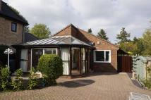2 bed Detached Bungalow to rent in Brookside Bar, Brookside...