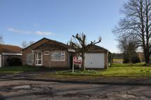 4 bed Detached Bungalow in Saddlers Mead, Wilton...