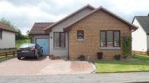 3 bed Detached Bungalow in Mannachie Brae, Forres...