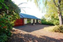 3 bed Detached Bungalow for sale in Joel Lane, Gee Cross...