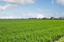 Aldborough Land for sale