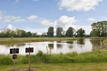Land for sale in Oxborough, King's Lynn...