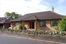 3 bed Detached Bungalow in Langhaugh...