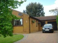 3 bed Detached Bungalow in Berrydale, Northampton...
