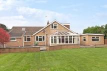 5 bed Detached Bungalow for sale in Nutbrook Avenue...