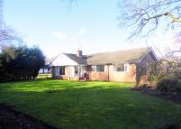 Detached Bungalow for sale in Oak Villa, Wrexham...