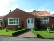 Detached Bungalow for sale in Boroughbridge, York...