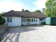 3 bed Detached Bungalow in Hillside Walk...