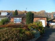 Detached Bungalow for sale in Rhyddyn Hill, Wrexham...