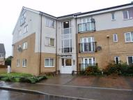 Berengers Place new Flat to rent