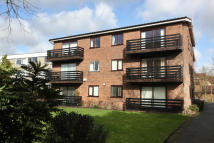 2 bedroom Apartment in The Avenue , Beckenham...