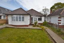 Detached Bungalow to rent in Broadstone