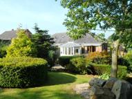 Semi-Detached Bungalow for sale in Kittlingbourne Brow...