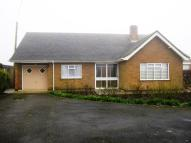 Detached Bungalow to rent in Main Road, Leverton, PE22