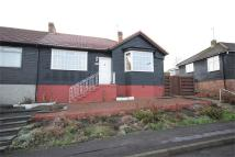 Semi-Detached Bungalow for sale in 19 Milne Crescent...
