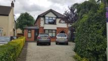 3 bed semi detached house to rent in Uppingham Road, LE7