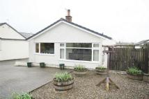 Detached Bungalow in 26 Beech Lane...
