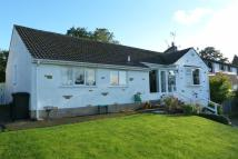 Bungalow for sale in Dale Bank, Harrogate...