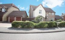 Ely Gardens Detached house for sale