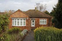 2 bed Detached Bungalow in Rodney Avenue, Tonbridge
