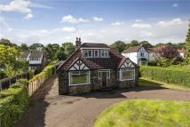 Bungalow in The Crescent, Adel...