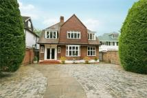 Detached home to rent in Hartington Road, Chiswick