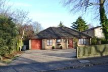 Duchess Drive Detached Bungalow for sale