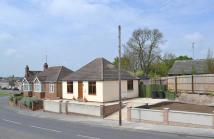 3 bedroom Detached Bungalow in New Cheveley Road...