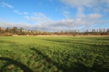 Cadborough Marsh Land