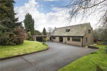 4 bedroom Detached house in Little Bellman...