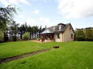 Duffshill Detached house to rent