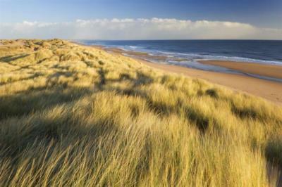 Beach from dunes