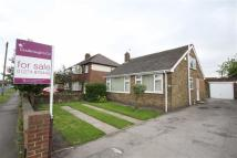 Detached Bungalow for sale in White Lee Road, Batley...