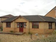 Ulverscroft Semi-Detached Bungalow to rent