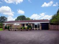 Detached Bungalow for sale in Ainderby Road...