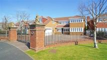 The Wynd Detached property for sale