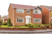 The Fir Trees Detached property for sale
