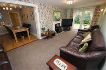 142 Millgate Detached Bungalow for sale