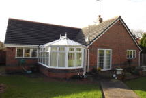 Bungalow in Hinchley Close...