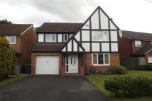 4 bedroom property to rent in Elm Drive; Holmes...