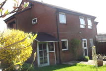 Studio flat to rent in Titchfield Common