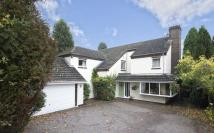 4 bedroom Detached property for sale in Little Oaks Drive...