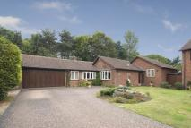 Detached Bungalow in Seekings...