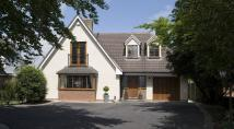 4 bedroom Detached property in 14 Redlake Road...