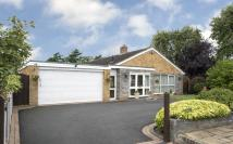 Detached Bungalow in 99 Osmaston Road, Norton...